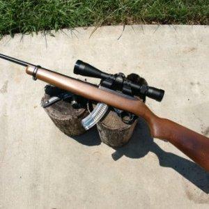 ruger 10 22 scoped